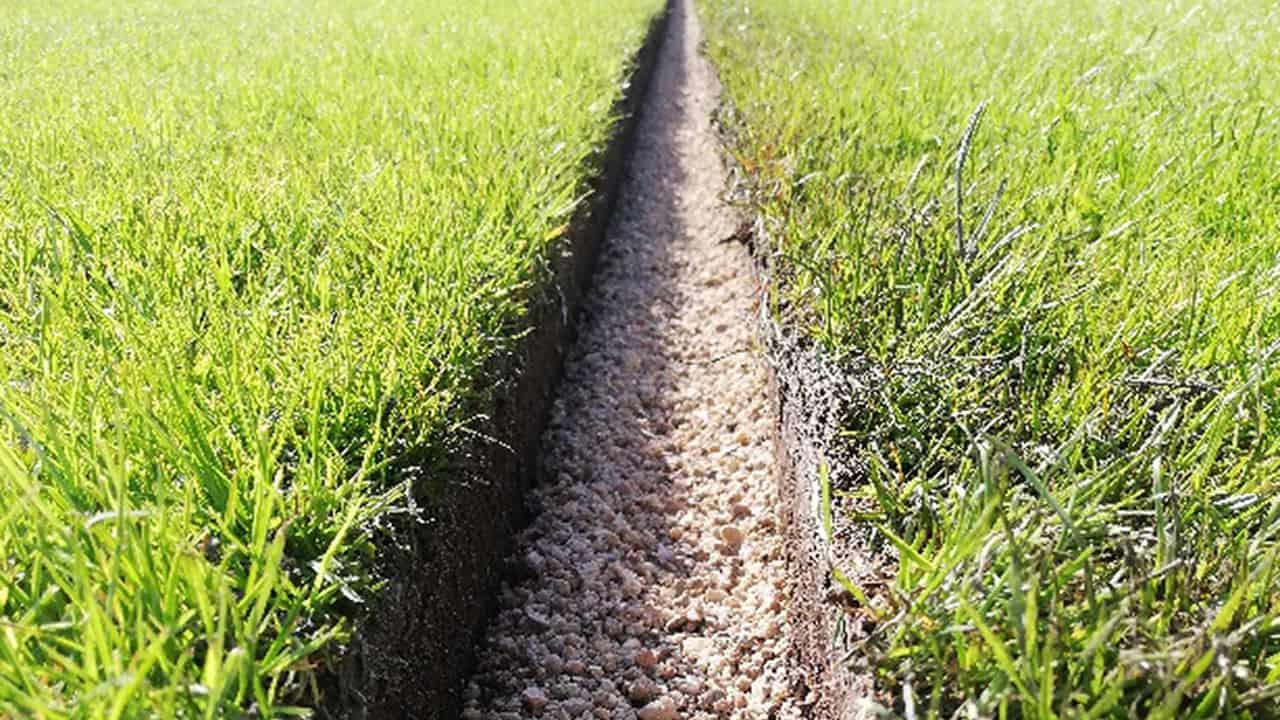 Rénovation de terrain en gazon naturel